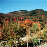 Motorcycle Ride Picture 2 for Kancamagus Scenic Byway