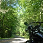 Motorcycle Ride Picture 2 for Wayah Road (SR 1310) - The locals call it Thunder Road.