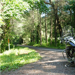 Motorcycle Ride Picture 4 for Wayah Road (SR 1310) - The locals call it Thunder Road.
