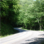 Motorcycle Ride Picture 7 for Wayah Road (SR 1310) - The locals call it Thunder Road.