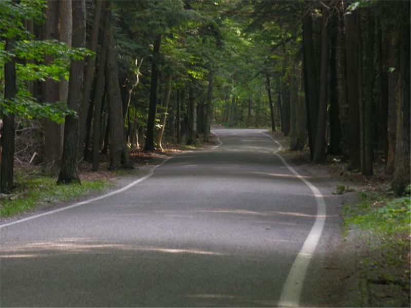 tunnel of trees michigan motorcycle rides and motorcycle roads