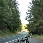 Motorcycle Ride Picture 2 for Beautiful N. California day trip