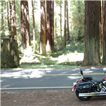 Motorcycle Ride Picture 15 for Beautiful N. California day trip